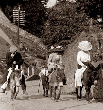 Malvern donkeys carrying their Victorian passengers