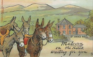 Malvern Water Cure Loan Box donkeys